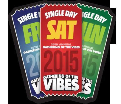 GOTV2015-GA-ticketfan